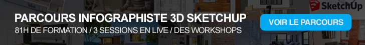 Parcours Infographiste 3D SketchUp