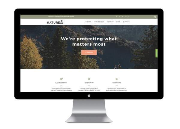 Thème WordPress gratuit