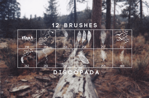 12-brushes-discopada