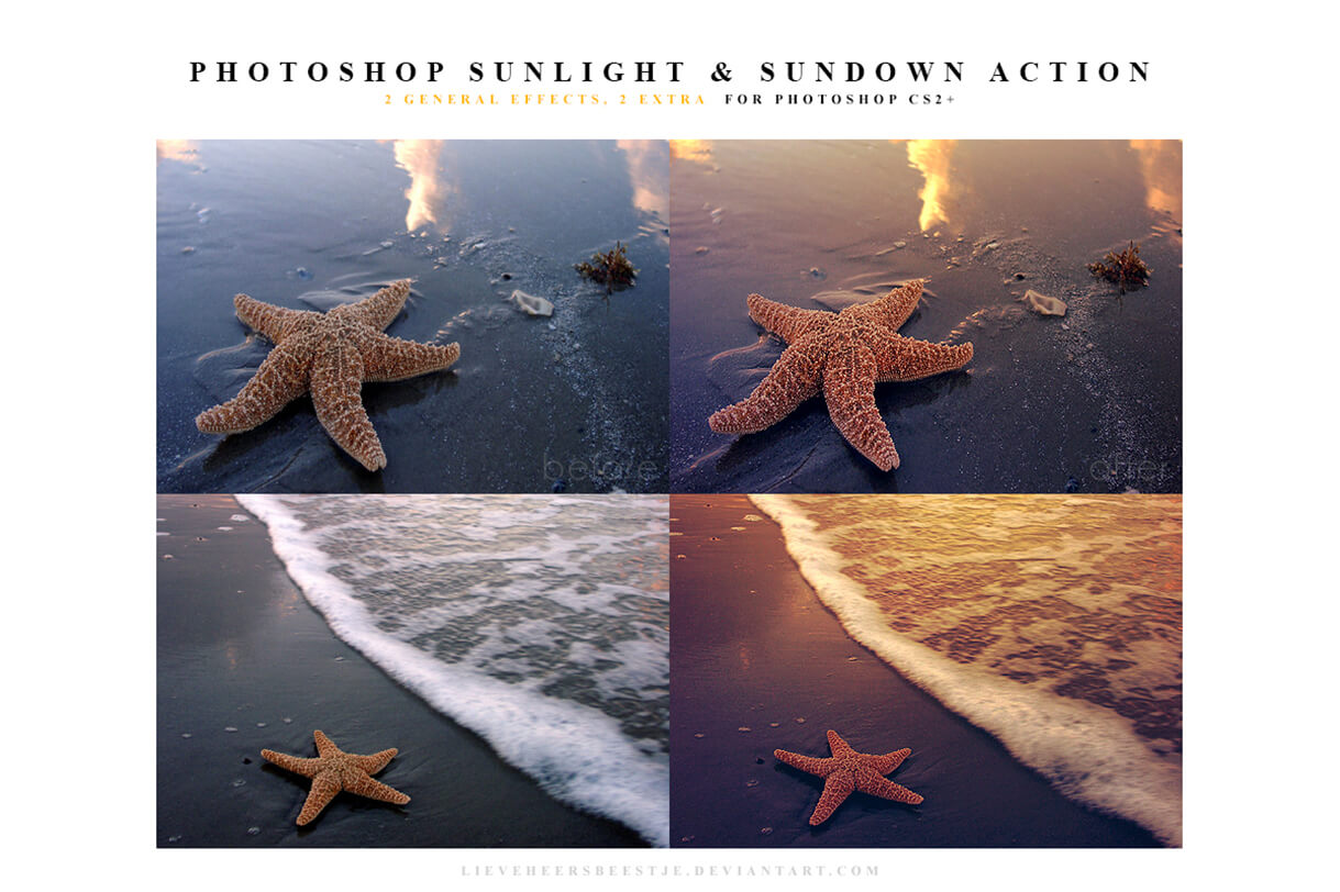 action-script-sundlight-sunset