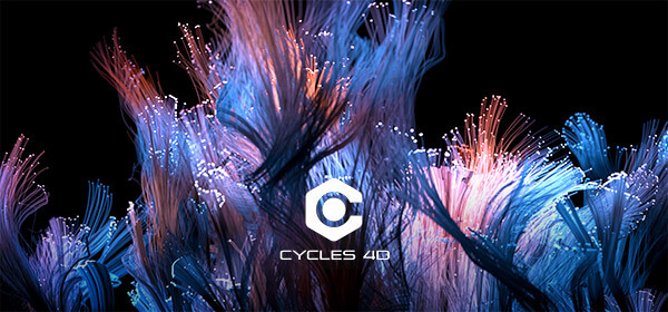 cycles-4d