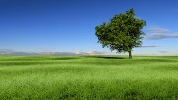Tuto Blender nature